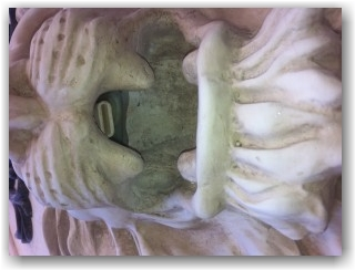Fountain Piece in Lion's mouth